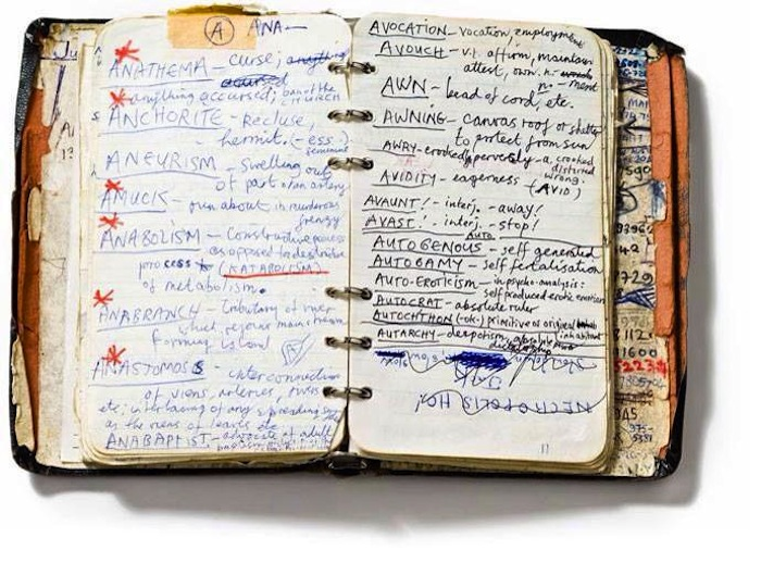 Nick Cave's personal dictionary