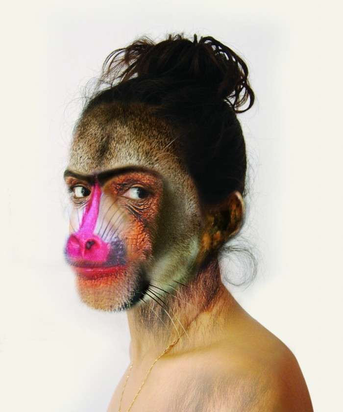 Bharit Kher, Hybrid series self portrait, 2007, digital C-print, 45 x 54 cm,Rockbund Art Museum, Shanghai